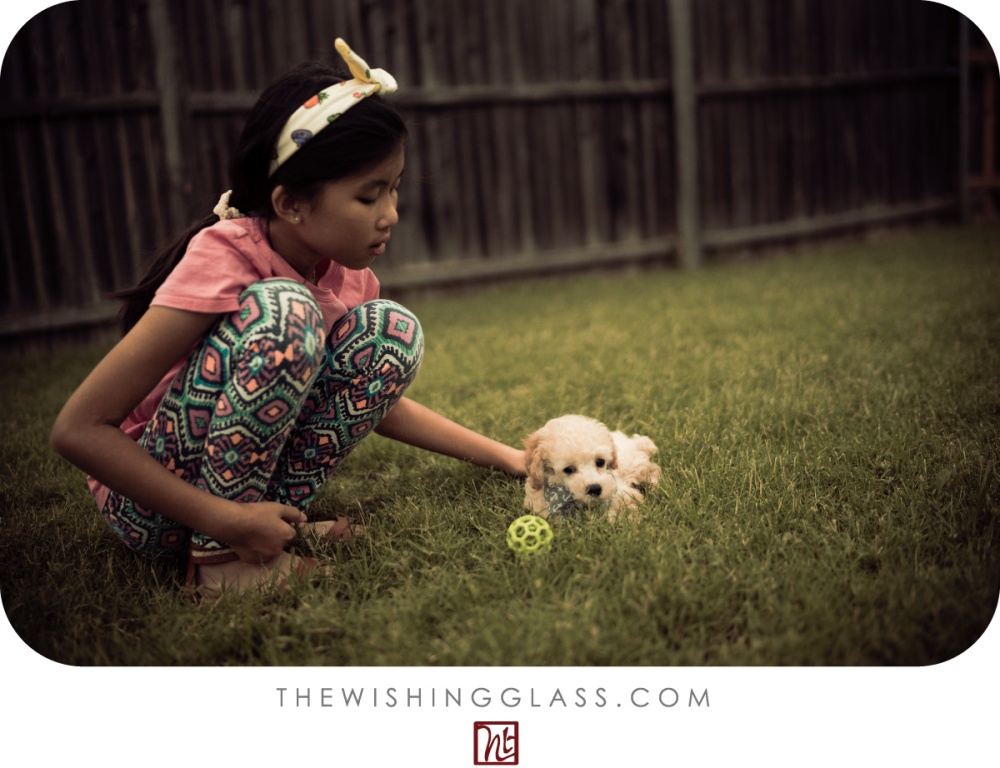 Life-with-Cancer-13---A-Girl-and-Her-Dog